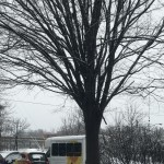 Our Rockland Place vehicles stood out even in the snowy conditions.